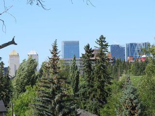 Photo 20: 507 RIVERDALE Avenue SW in Calgary: Elboya Detached for sale : MLS®# A1014165
