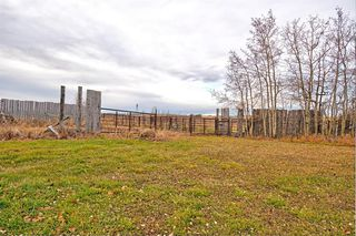 Photo 35: 291126 Range Road 10A in Rural Rocky View County: Rural Rocky View MD Detached for sale : MLS®# A1036450