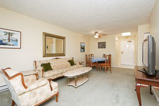 Photo 4: 405 1521 Church Avenue in VICTORIA: SE Cedar Hill Condo Apartment for sale (Saanich East)  : MLS®# 414443
