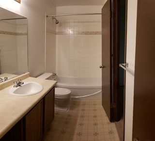 Photo 15:  in Edmonton: Zone 35 Carriage for sale : MLS®# E4169252