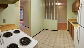 Photo 7:  in Edmonton: Zone 35 Carriage for sale : MLS®# E4169252