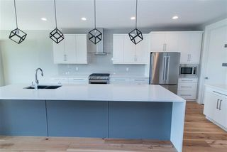 Photo 4: 890 Hodgins RD NW in Edmonton: Zone 58 House for sale : MLS®# E4183924