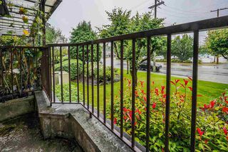 """Photo 14: 1 11900 228 Street in Maple Ridge: East Central Condo for sale in """"Moonlite Grove"""" : MLS®# R2471261"""
