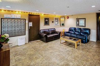 """Photo 5: 1 11900 228 Street in Maple Ridge: East Central Condo for sale in """"Moonlite Grove"""" : MLS®# R2471261"""