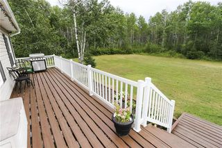 Photo 35: 40151 Mun 48 Road North in St Genevieve: R05 Residential for sale : MLS®# 202019023