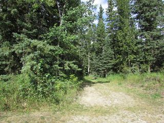 Photo 41: 5076 Township Rd 342: Rural Mountain View County Detached for sale : MLS®# A1027459