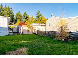 """Photo 25: 84 2270 196 Street in Langley: Brookswood Langley Manufactured Home for sale in """"Pineridge Park"""" : MLS®# R2511479"""