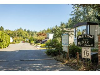 """Photo 4: 84 2270 196 Street in Langley: Brookswood Langley Manufactured Home for sale in """"Pineridge Park"""" : MLS®# R2511479"""