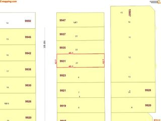 Photo 7: 9931 157 Street in Edmonton: Zone 22 House for sale : MLS®# E4219339