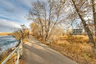 Photo 44: 99 Inglewood Cove SE in Calgary: Inglewood Semi Detached for sale : MLS®# A1049668