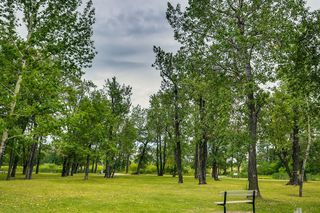 Photo 46: 99 Inglewood Cove SE in Calgary: Inglewood Semi Detached for sale : MLS®# A1049668