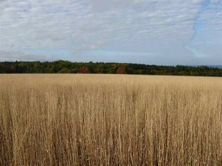 Photo 2: Lot 2 Armstrong Road in Ogilvie: 404-Kings County Vacant Land for sale (Annapolis Valley)  : MLS®# 202023375