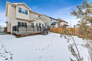 Photo 44: 11 Baywater Court SW: Airdrie Detached for sale : MLS®# A1055709
