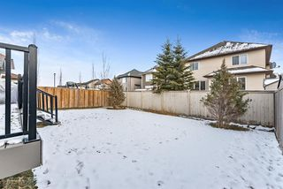 Photo 43: 11 Baywater Court SW: Airdrie Detached for sale : MLS®# A1055709