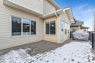 Photo 41: 11 Baywater Court SW: Airdrie Detached for sale : MLS®# A1055709