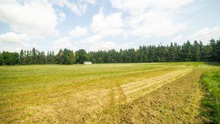 Photo 15: 7303 4 Avenue in Edmonton: Zone 53 Vacant Lot for sale : MLS®# E4166634