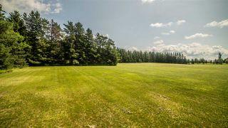 Photo 16: 7303 4 Avenue in Edmonton: Zone 53 Vacant Lot for sale : MLS®# E4166634
