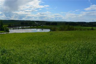 Photo 4: 48155 W 242 Ave.: Rural Foothills County Land for sale : MLS®# C4293433