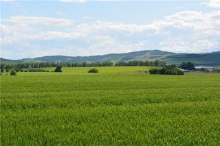 Photo 2: 48155 W 242 Ave.: Rural Foothills County Land for sale : MLS®# C4293433