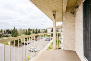Photo 38: 408 18012 95 Avenue in Edmonton: Zone 20 Condo for sale : MLS®# E4197627