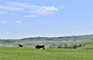 Photo 18: : Rural Foothills County Land for sale : MLS®# C4302344