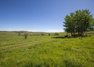 Photo 9: : Rural Foothills County Land for sale : MLS®# C4302344