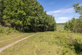 Photo 14: : Rural Foothills County Land for sale : MLS®# C4302344