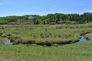 Photo 17: : Rural Foothills County Land for sale : MLS®# C4302344