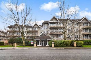"""Photo 1: 205 5556 201A Street in Langley: Langley City Condo for sale in """"Michaud Gardens"""" : MLS®# R2523718"""