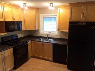 Photo 21: 10928 77 Avenue NW in Edmonton: Zone 15 House for sale : MLS®# E4223961