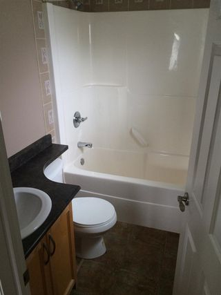 Photo 22: 10928 77 Avenue NW in Edmonton: Zone 15 House for sale : MLS®# E4223961