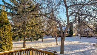 Photo 16:  in Edmonton: Zone 14 House Half Duplex for sale : MLS®# E4181452