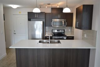 Photo 2: 315 667 WATT Boulevard in Edmonton: Zone 53 Condo for sale : MLS®# E4182685