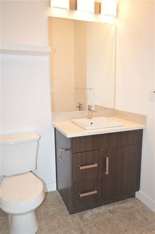 Photo 13: 315 667 WATT Boulevard in Edmonton: Zone 53 Condo for sale : MLS®# E4182685