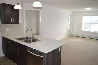 Photo 5: 315 667 WATT Boulevard in Edmonton: Zone 53 Condo for sale : MLS®# E4182685