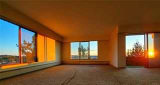 Photo 14: 405 2910 Cook St in : Vi Mayfair Condo for sale (Victoria)  : MLS®# 860042