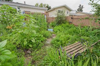 Photo 5: 11003 40 Avenue in Edmonton: Zone 16 House for sale : MLS®# E4166524