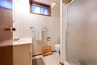 Photo 30: 11003 40 Avenue in Edmonton: Zone 16 House for sale : MLS®# E4166524