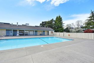 "Photo 16: 313 3451 SPRINGFIELD Drive in Richmond: Steveston North Condo for sale in ""ADMIRAL COURT"" : MLS®# R2407517"