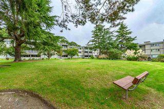 "Photo 18: 313 3451 SPRINGFIELD Drive in Richmond: Steveston North Condo for sale in ""ADMIRAL COURT"" : MLS®# R2407517"
