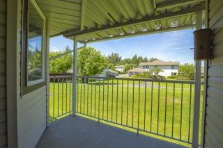 """Photo 22: 64 15020 66A Avenue in Surrey: East Newton Townhouse for sale in """"Sullivan Mews"""" : MLS®# R2465921"""
