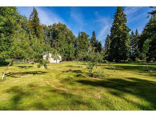 Photo 35: 25183 ROBERTSON Crescent in Langley: Salmon River House for sale : MLS®# R2477122