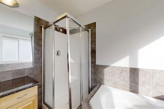 Photo 18: 12344 20 Avenue SW in Edmonton: Zone 55 House for sale : MLS®# E4170990