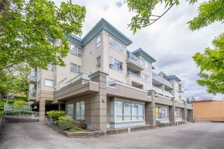 "Main Photo: 307 1085 W 17TH Street in North Vancouver: Pemberton NV Condo for sale in ""Lloyd Regency"" : MLS®# R2488992"