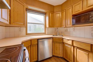 Photo 18: 7324 75 Street in Edmonton: Zone 17 House for sale : MLS®# E4214187