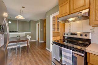 Photo 19: 7324 75 Street in Edmonton: Zone 17 House for sale : MLS®# E4214187