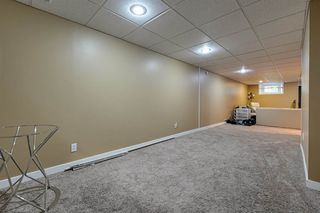 Photo 33: 7324 75 Street in Edmonton: Zone 17 House for sale : MLS®# E4214187
