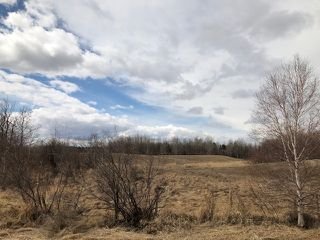 Photo 1: Twp 512 Range Rd 225: Rural Strathcona County Rural Land/Vacant Lot for sale : MLS®# E4216658