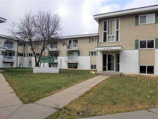 Main Photo: 210 8640 106 Avenue in Edmonton: Zone 13 Condo for sale : MLS®# E4219993
