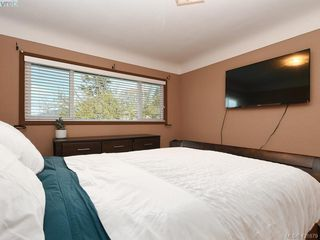Photo 10: 4145 Birtles Ave in VICTORIA: SW Glanford Single Family Detached for sale (Saanich West)  : MLS®# 835004